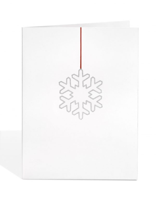 Silver Snowflake Decoration Print (Decoration Removed)